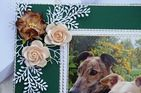 HAND MADE HAPPY BIRTHDAY KEEPSAKE CARD BOXED WITH GREYHOUNDS AND FLOWERS